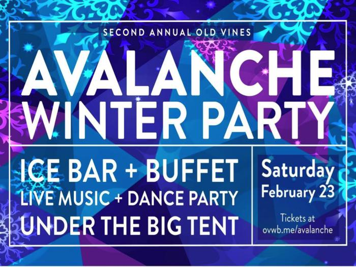 Avalanche Winter Party
