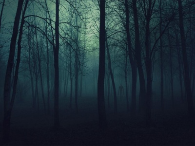 Scary Woods